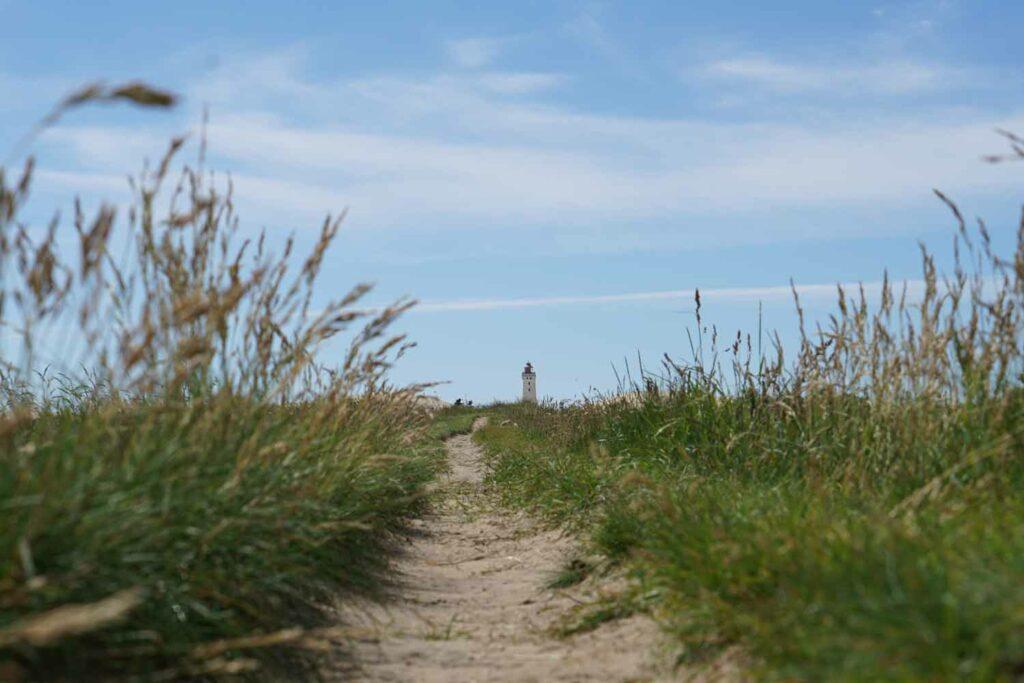 Stress og vejen til trivsel - Et fyrtårn